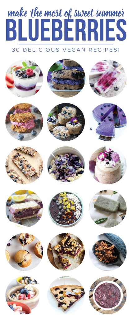 30 Vegan Blueberry Recipes Perfect for Summer