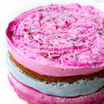Cotton Candy Ice Cream Cake {Vegan & Gluten-Free}