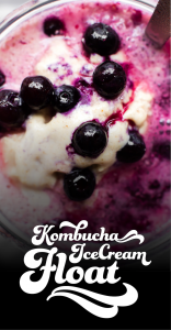 Kombucha Ice Cream Float