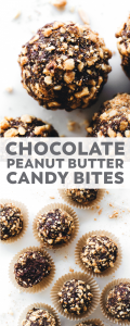 Chocolate Peanut Butter Candy Bites