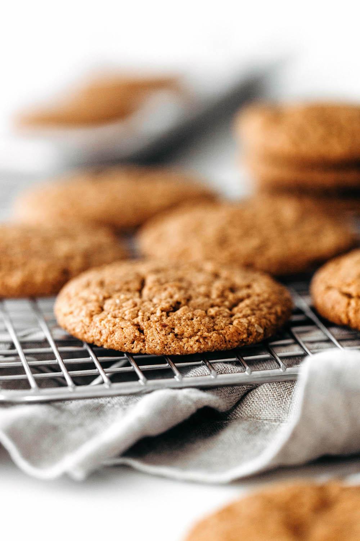 Vegan Ginger Molasses Cookies (paleo friendly!)