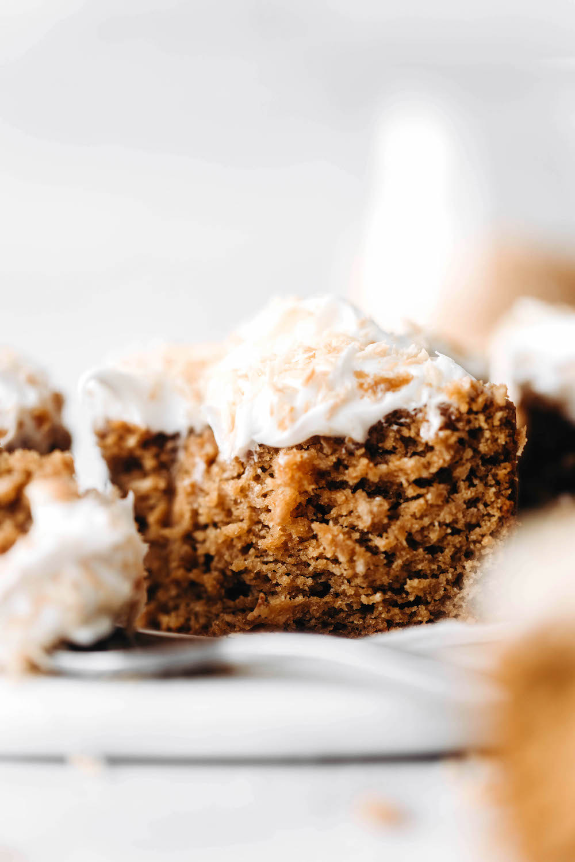 Toasted Coconut Cake (vegan + grain-free)